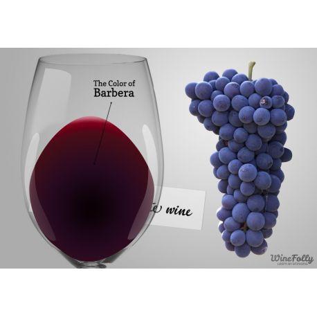 Srovnávací sada vín Barbera: Alba - Colli Tortonesi - Monferrato