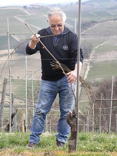 Nové vinařství v naší nabídce: Gomba Boschetti - vína (nejen) Barolo